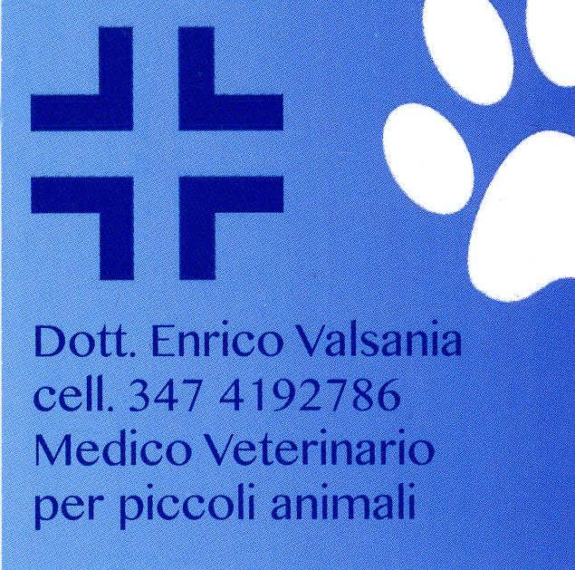Logo Dott. Enrico Valsania